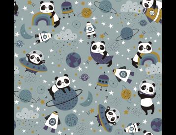 Panda Espacial