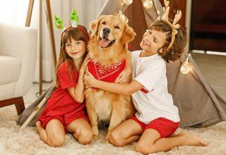 Traga a magia do Natal para dentro da sua casa